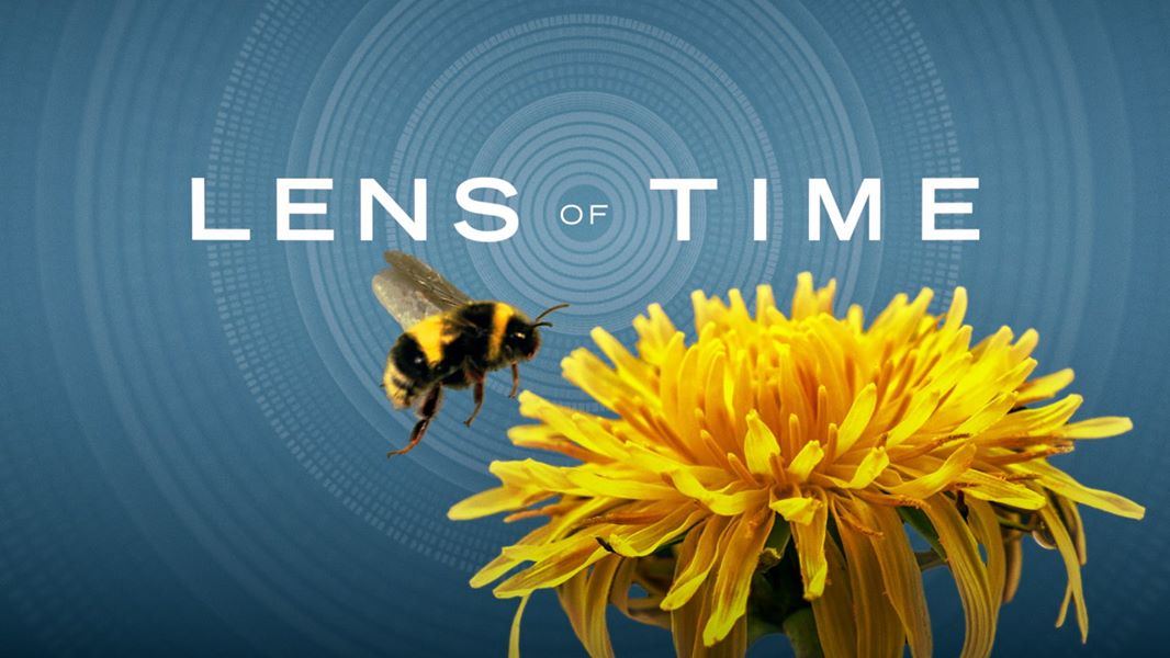 "Announcing the premiere of ""Lens of Time"""
